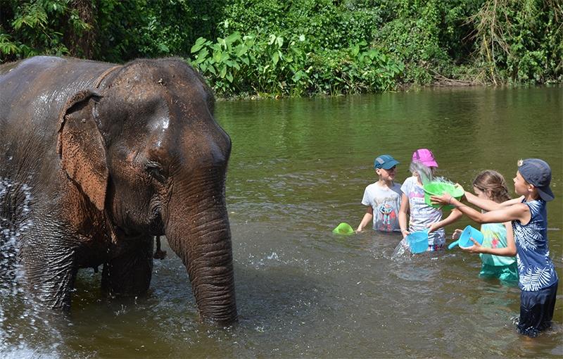Familiereis ZUID-THAILAND CULTUUR & STRAND - 15 dagen; Cultuur, natuur én strand afbeelding