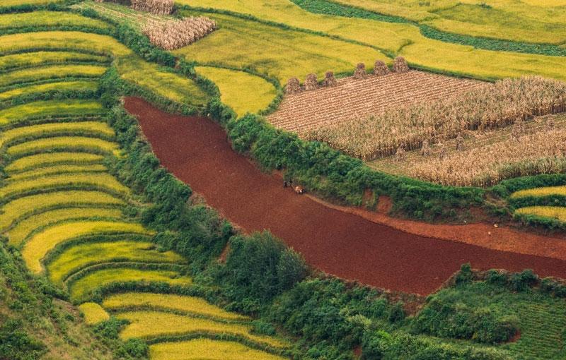 Rondreis CHINA: YUNNAN - 22 dagen; Langs de Zuid-Chinese theeroute afbeelding
