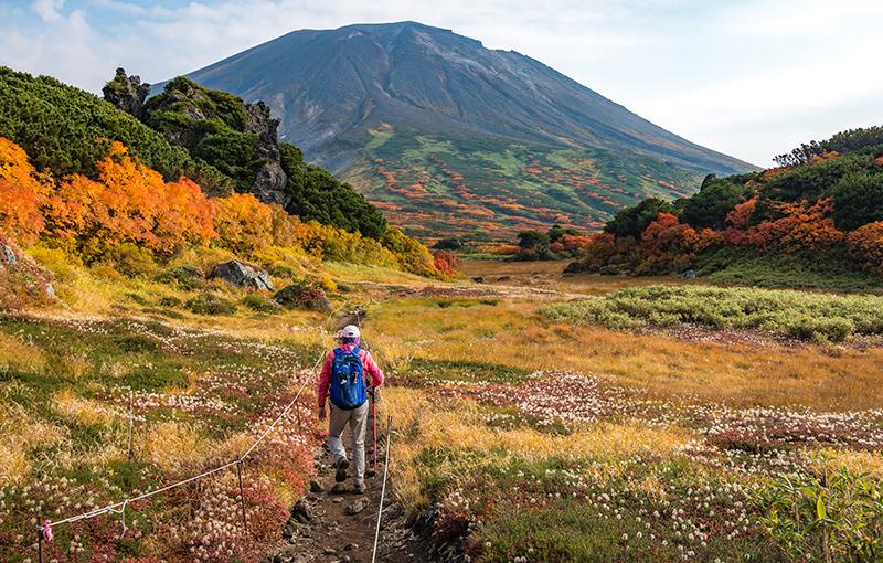 Rondreis JAPAN HOKKAIDO - 15 dagen; Noordelijke natuurpracht afbeelding