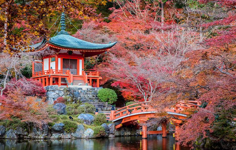 Rondreis JAPAN - 15 dagen; Hoogtepunten van Honshu