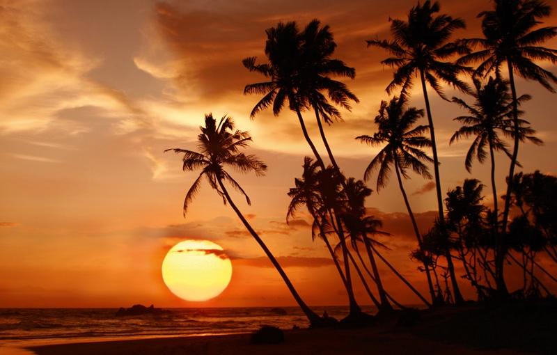 Rondreis SRI LANKA - 21 dagen; Juweel van de Indische Oceaan afbeelding