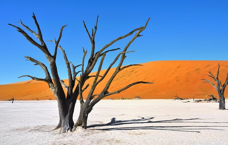 Rondreis NAMIBIË - Internationale Kampeerreis - 21 dagen; Dwars door woestijn en zoutvlaktes