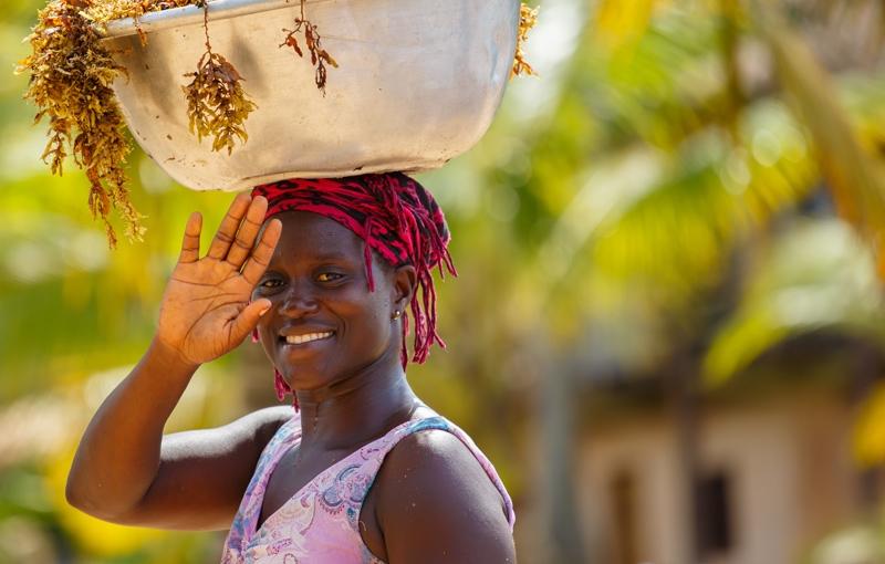 Rondreis GHANA - 15 dagen; Slavenforten en heilige apen
